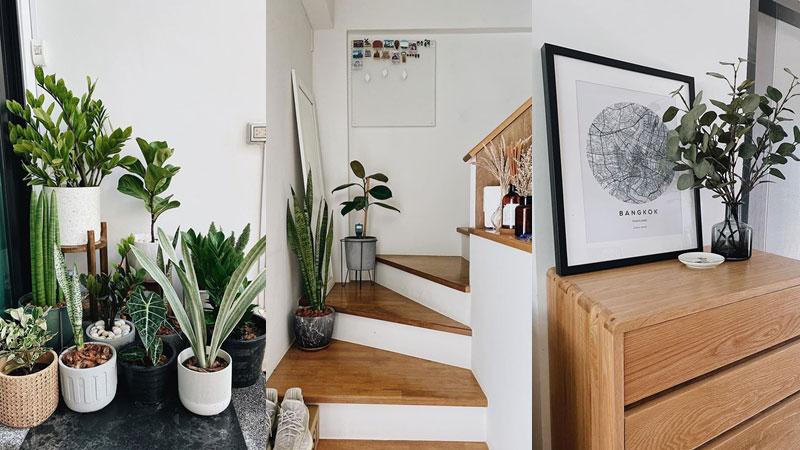 วิธีจัดบ้านให้โล่งสวย